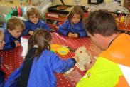Builder in the Nursery (4)