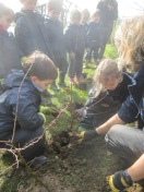 Reception Forest School (3)
