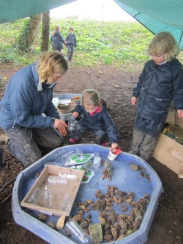 Reception Forest School (9)