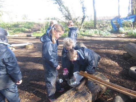 Yr2 Forest School (8)