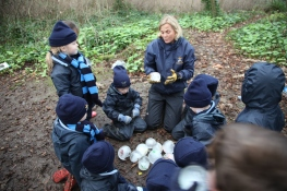 Reception ice dinosaur eggs