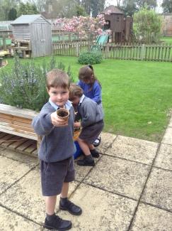 Reception planting