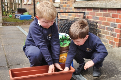 Reception planting vegetables
