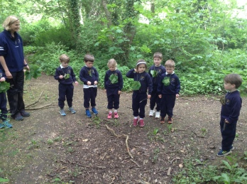 Reception looking at leaves