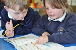 Year 1 using dictionaries