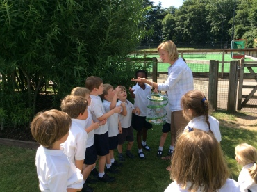 Reception releasing the butterflies