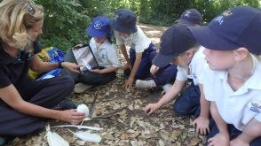 Forest School with Mrs Millard