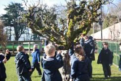 Year 2 Forest School