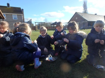 Year 2 Forest School