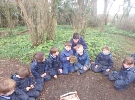 Year 1 Forest School