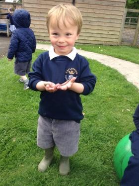 A very long garden worm