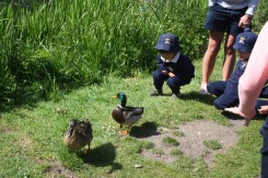 Nursery Outing to Yeovil Country Park